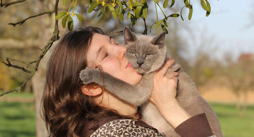חתול ואישה